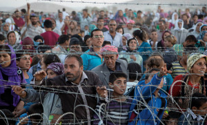 large_building-his-church-in-a-refugee-crisis